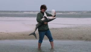 Anchorman-2-Shark